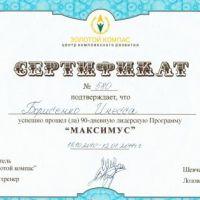 Сертификат Борисенко Инесса Викторовна